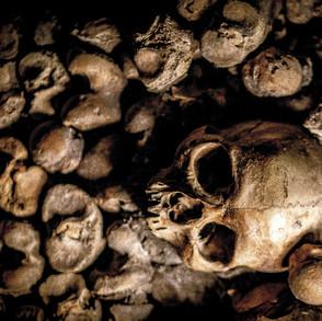 Dead Bones Rise Up