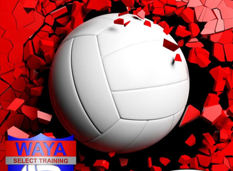 WAYA VBALL Training