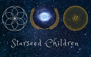 Starseed Tutoring a NEW Offering in Holistic Education
