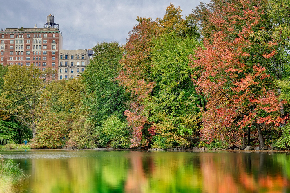 Autumn image with water tower NYC