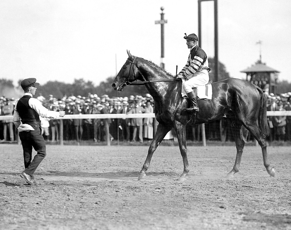 Thoroughbred racehorse Man o' War in the 1920 Travers Stakes at Saratoga.