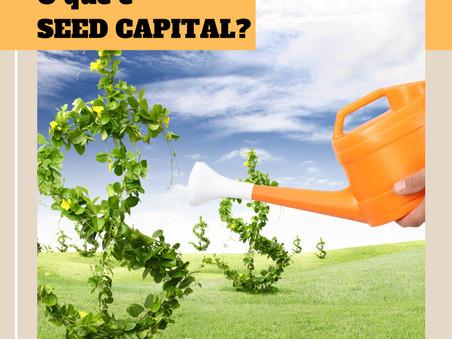 Startup: O que é SEED CAPITAL?