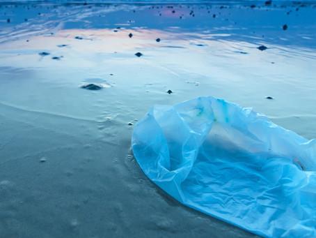 Hat der Müll im Meer auch was mit uns zu tun?
