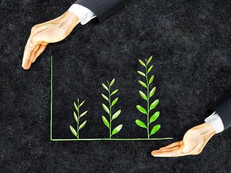 La sostenibilidad, estrategia rentable para las empresas