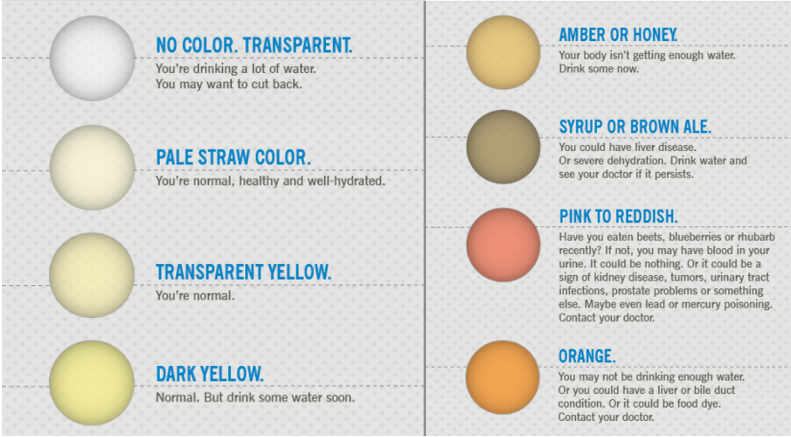 A Cleveland Clinic Infographic on what urine colors says about your water consumption and how well you are hydrated for your body.