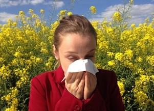 Allerte aux allergies saisonnières