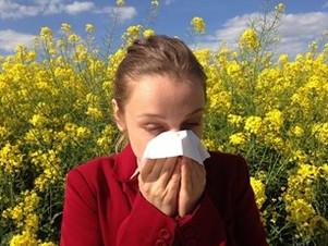 Allergies saisonnières: Rhume des foins