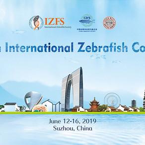 [Closed] Meet Binaree X IZFC 2019 (Suzhou, China)