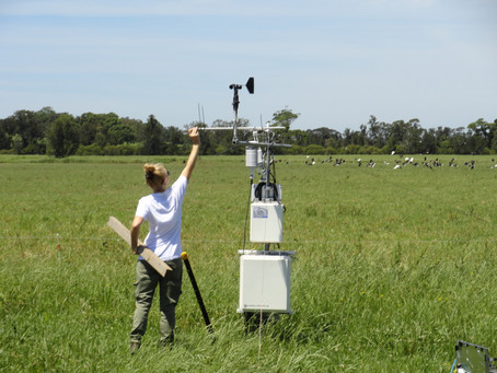 Grazing Lands Technical Monitoring Approach