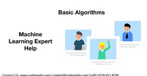 Machine Learning Assignment Help: Basic Algorithms