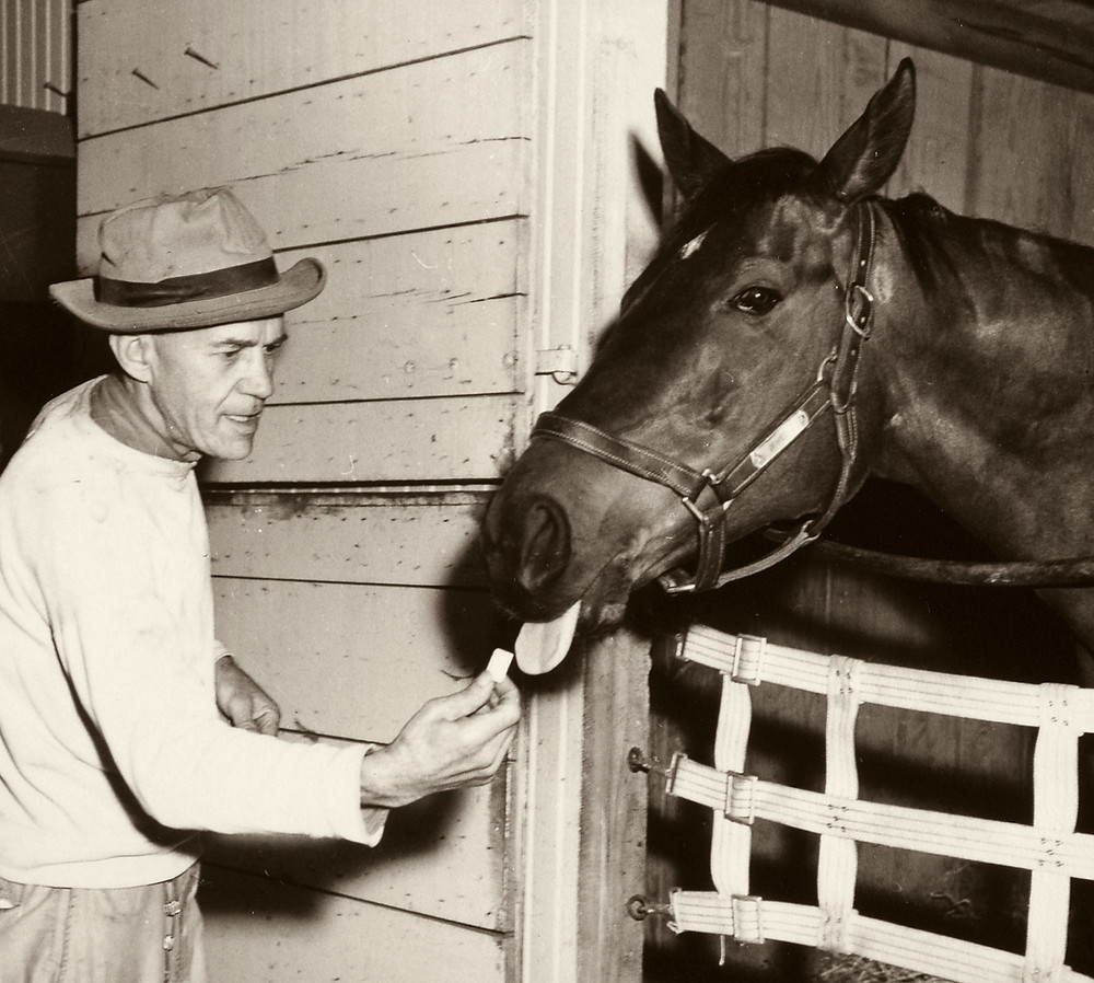 Armed, 1947 Horse of the Year, gets a treat from a groom. Sired by Bull Lea, raced by Calumet Farm.