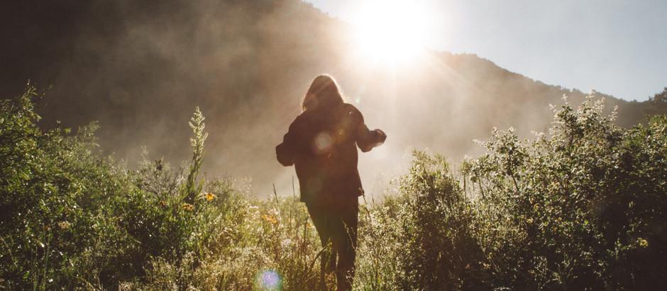 Into the Woods – Salzburgs feinste Wanderwege