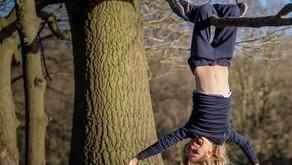 Hébertisme - Activité physique et naturelle - Un retour à l'essentiel