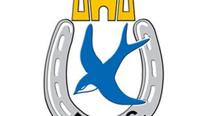 Match Report: Dungannon 0-3 Ards