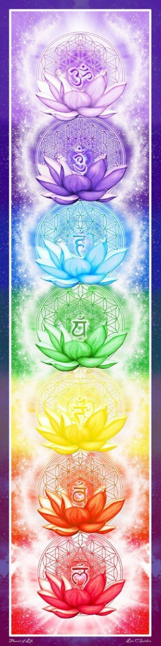 The seven major chakras and their Sanscript names