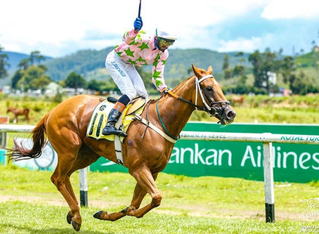Alcazabar wins the Governor's Cup 2018