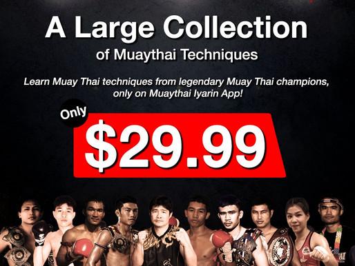Muaythai Techniques