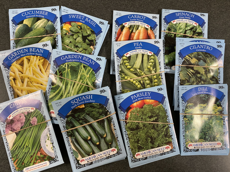 We've got seeds !!