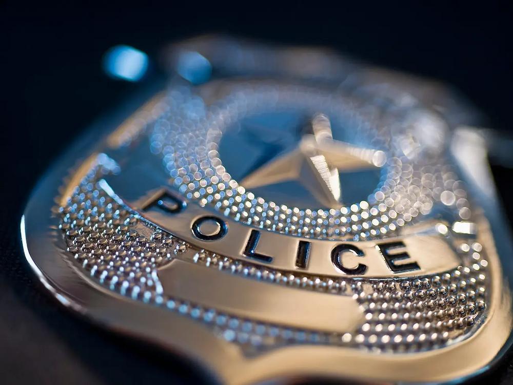 Michigan police badge.