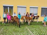Prüfungsfeier mit Lama-Unterstützung