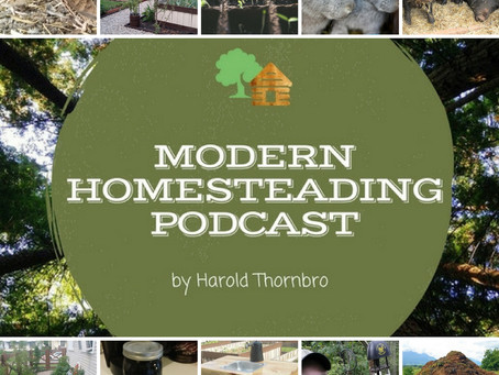 Homesteading On A Temporary Property
