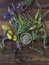Relaxation Herbal Tea & Thai Butternut Squash Curry  Recipe
