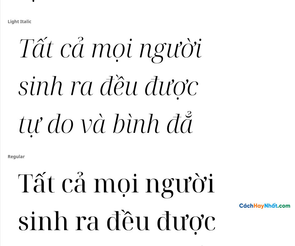 Font Noto Serif Display
