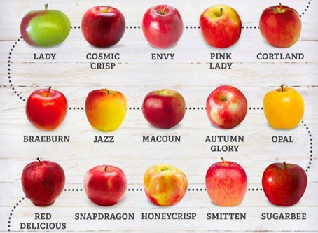 From Granny Smith to Fuji-Tart to Sweet.  Know Your Apples !!!