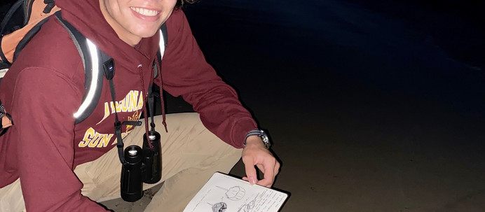 DDCSP Field Notes: Horseshoe Crabs