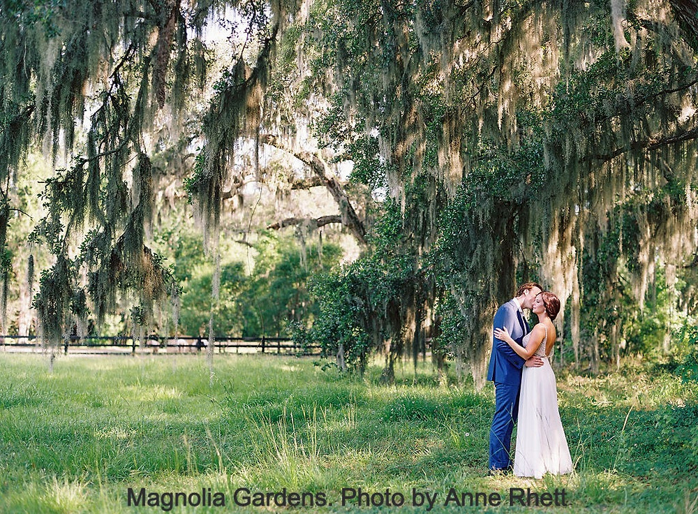 Groom kisses his bride as they stand in a field under an ancient oak tree draped in spanish moss