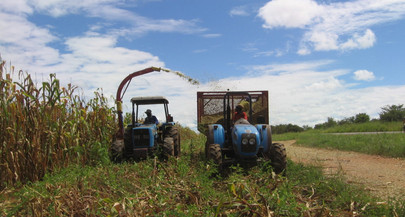 O campo moçambicano no século XXI: dilemas e perspectivas do campesinato frente ao agronegócio