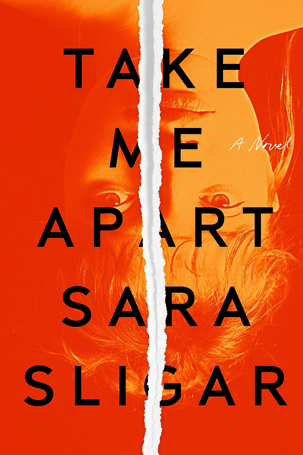 Take Me Apart by Sara Sligar : the book slut book reviews thebookslut