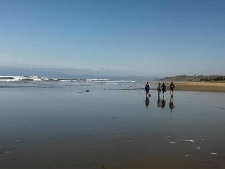 The Beach at Pajaro Dunes