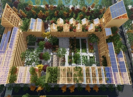 Imagine a Self-sufficient Lafayette Terraces