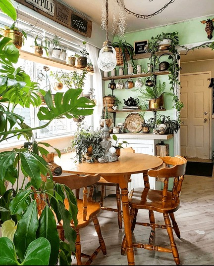 Dining room with round wooden table, green wall and lots of indoor plants. Decorate your room like a designer would.