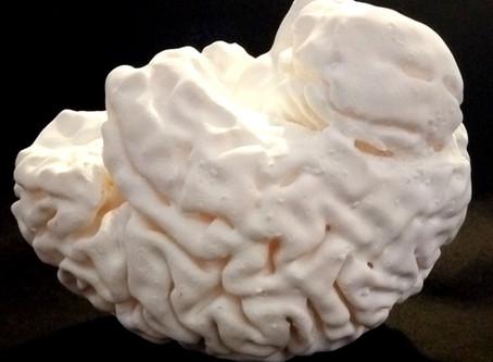 Un cervello stampato in 3D