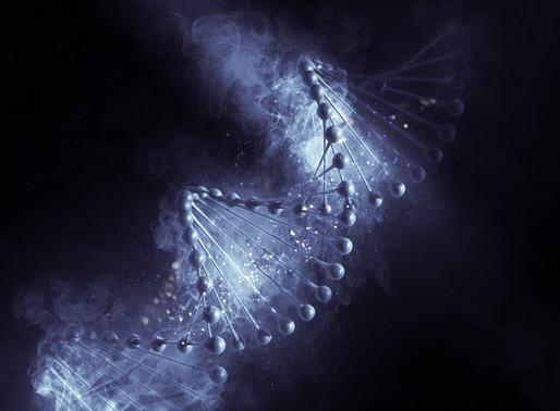 DNA e Ancestralidade
