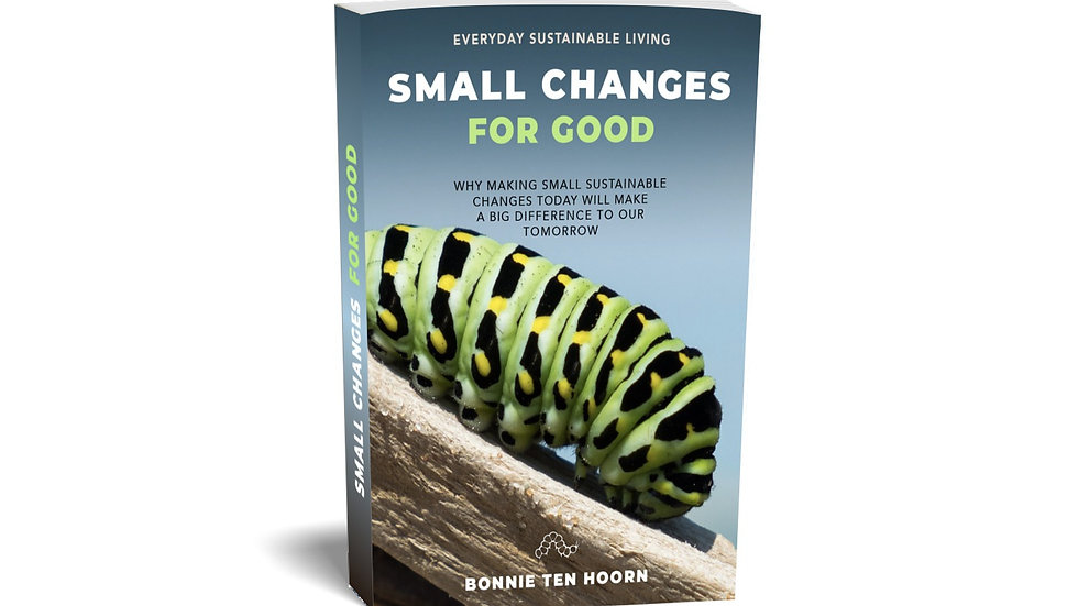 Small Changes For Good : e-book