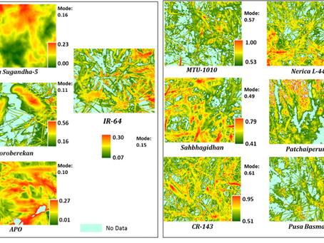 Thermal imaging and Hyperspectral remote sensing for crop water deficit stress monitoring