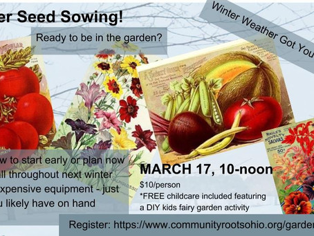 Coming Up: Winter Seed Sowing Class