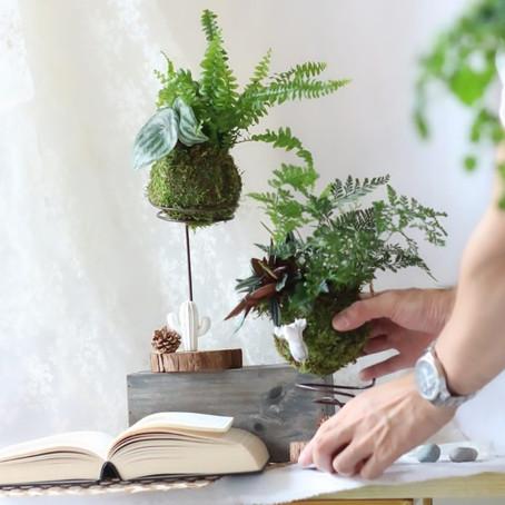 [工作坊日記] 豢養一座森林|手作擴香苔蘚球