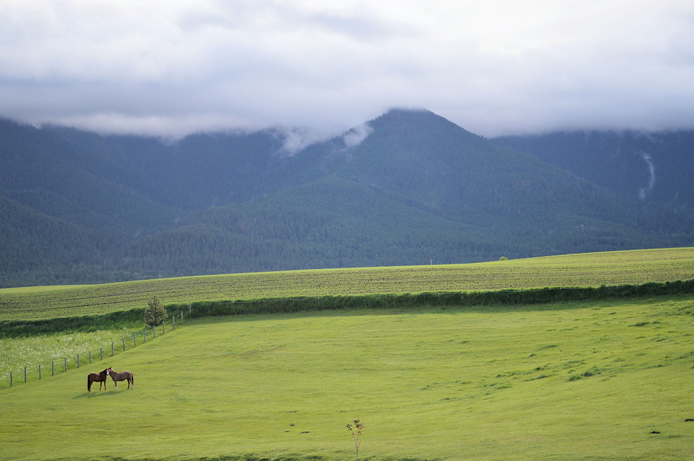 Montana mountains on a cloudy day. ©MK McClintock