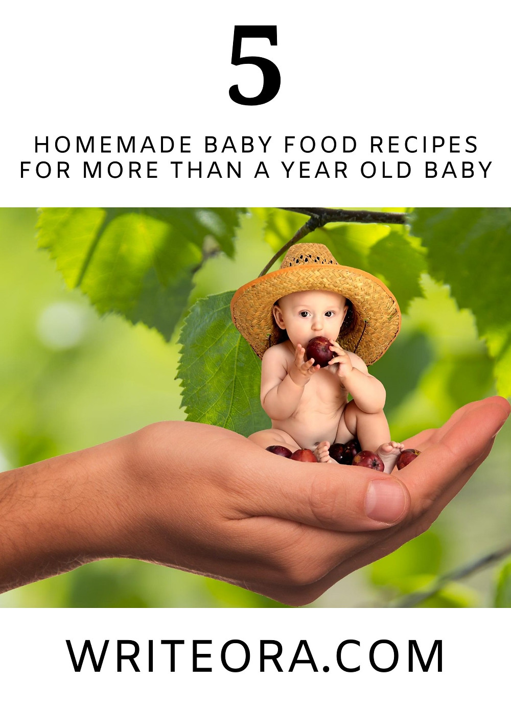 HOMEMADE BABY FOOD RECIPES FOR MORE THAN A YEAR OLD BABY
