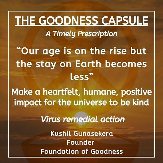 GOODNESS CAPSULE 2