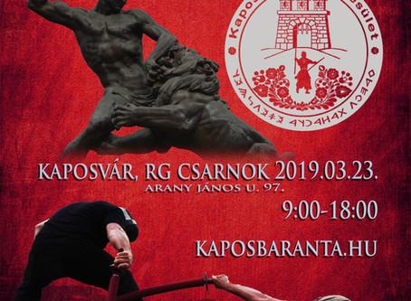 """Rosseb"" Kupa - 2019 versenykiírás"