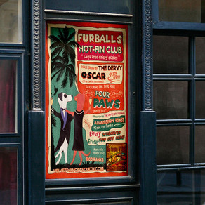 Poster for Club Furballs