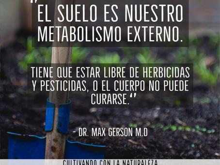La importancia del Suelo.  Dr. Max Gerson M.D.