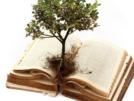 Reading God's Word for Growth