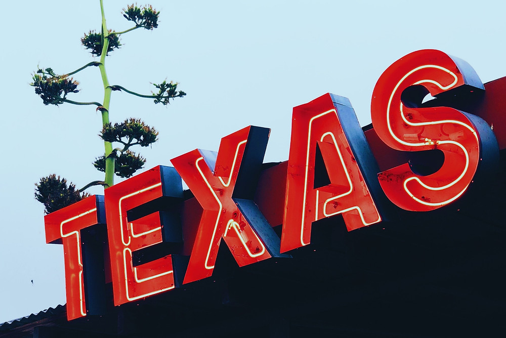 image of neon Texas sign
