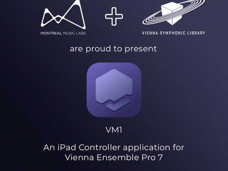 Introducing VM1